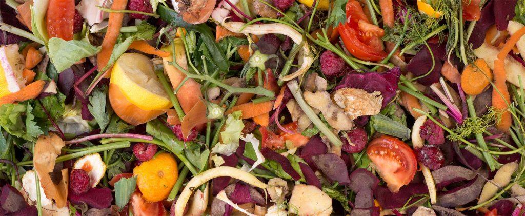 Matières organiques à composter