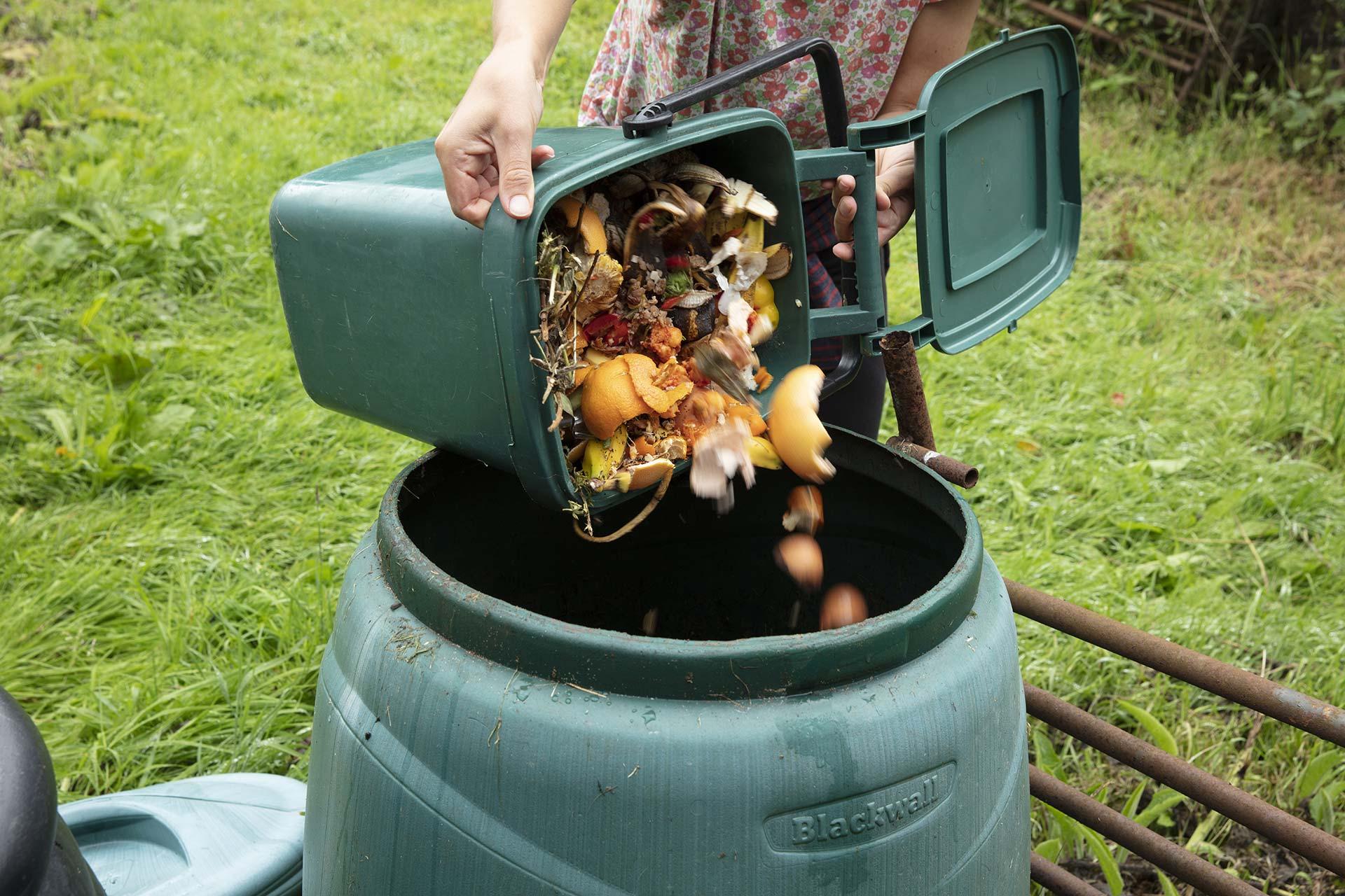 Déchets à mettre dans un composteur